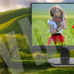 Ekologiczny monitor?  – Philips 241B7Q  – GreenPeace szczęśliwy!