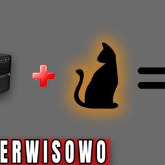 Kot i komputer to niebezpieczne połączenie…